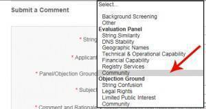 Select Evaluation Panel - Community